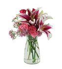 Stargazer  from Crestwood Florist, your flower shop in Kansas City